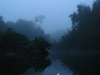 early-morning-paddle-franklin-river.jpg