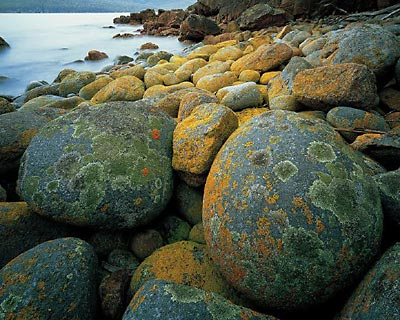 rocks on the Freycinet Peninsula